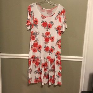 Steve & Co. Floral Drop Waist Dress